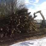 Highways large scale biomass trail